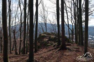 Między drzewami jakieś widoki.