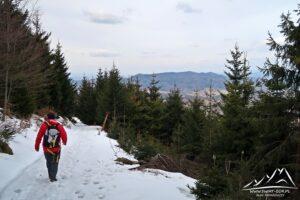 Zejście z Jawornika Wielkiego (widok na Góry Bardzkie).