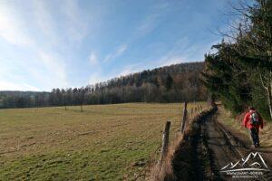Zielonym szlakiem w kierunku szczytu Kikoł.