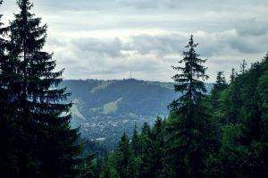 Ruszamy na Nosal, widok na Gubałówkę (1126 m.n.p.m.).