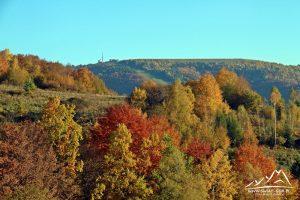 Góra Żar (761 m.n.p.m.)