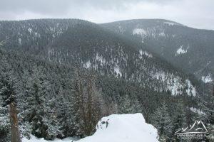 Widok na Śnieżnik Mały.