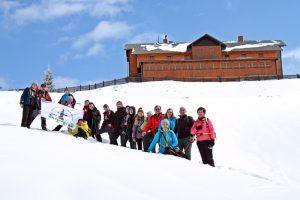 Trytonki pod schroniskiem na Hali Śnieżnickiej.