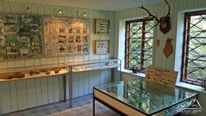 Ekspozycja muzeum.