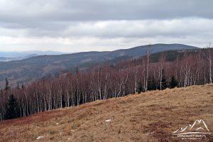 Rudnik - widok na Rudawy Janowickie i Góry Kaczawskie w dali.